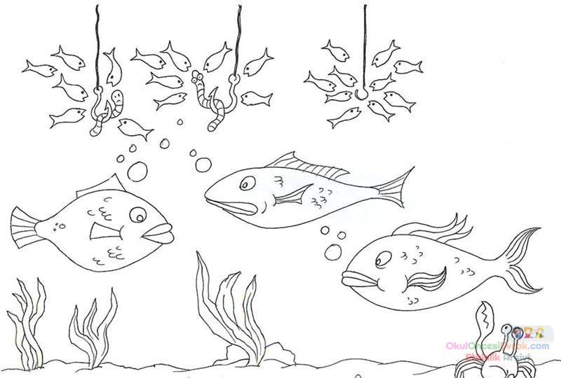 Balık Hayvanlar Deniz Canlıları Boyama 32 Preschool Activity