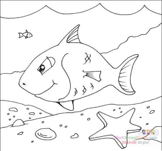 Balık Hayvanlar Deniz Canlıları Boyama 74 Preschool Activity