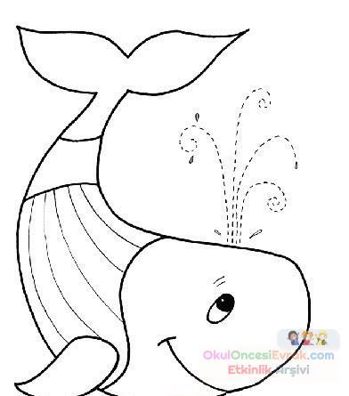 Balina Hayvanlar Deniz Canlıları Boyama 11 Preschool Activity