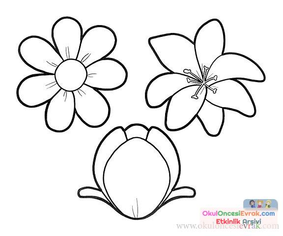 çiçek Kalıpları 2 Preschool Activity