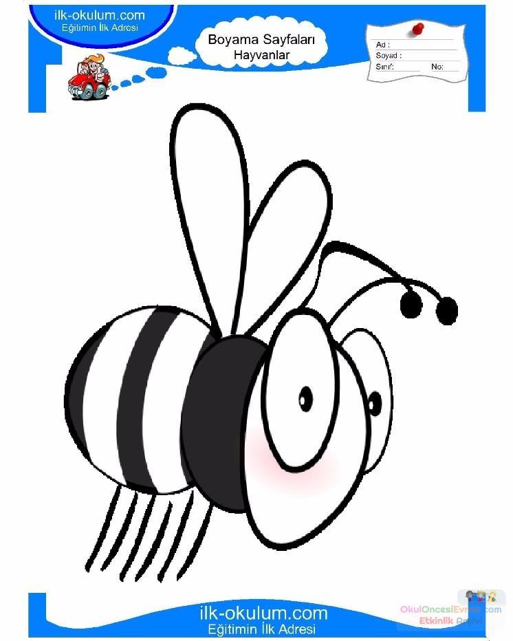 çocuklar Için Arı Hayvan Boyama Sayfası 12 Preschool Activity