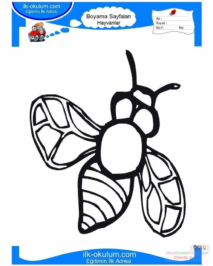 çocuklar Için Arı Hayvan Boyama Sayfası 22 Preschool Activity