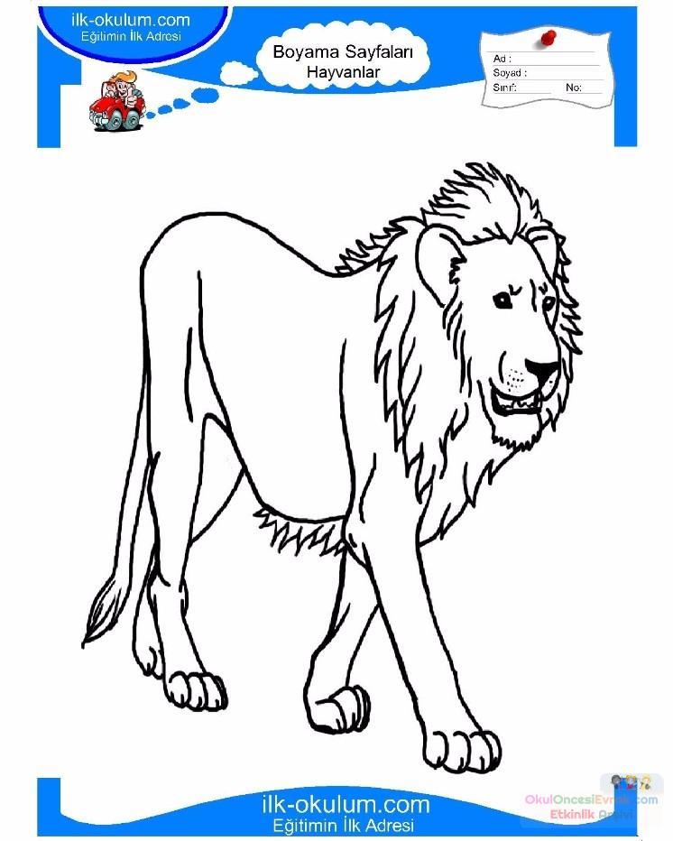 çocuklar Için Hayvan Aslan Boyama Sayfası 8 Preschool Activity