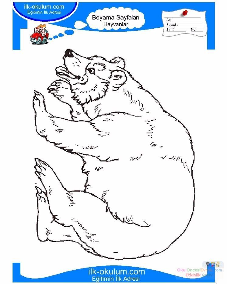 çocuklar Için Hayvan Ayı Boyama Sayfası 29 Preschool Activity