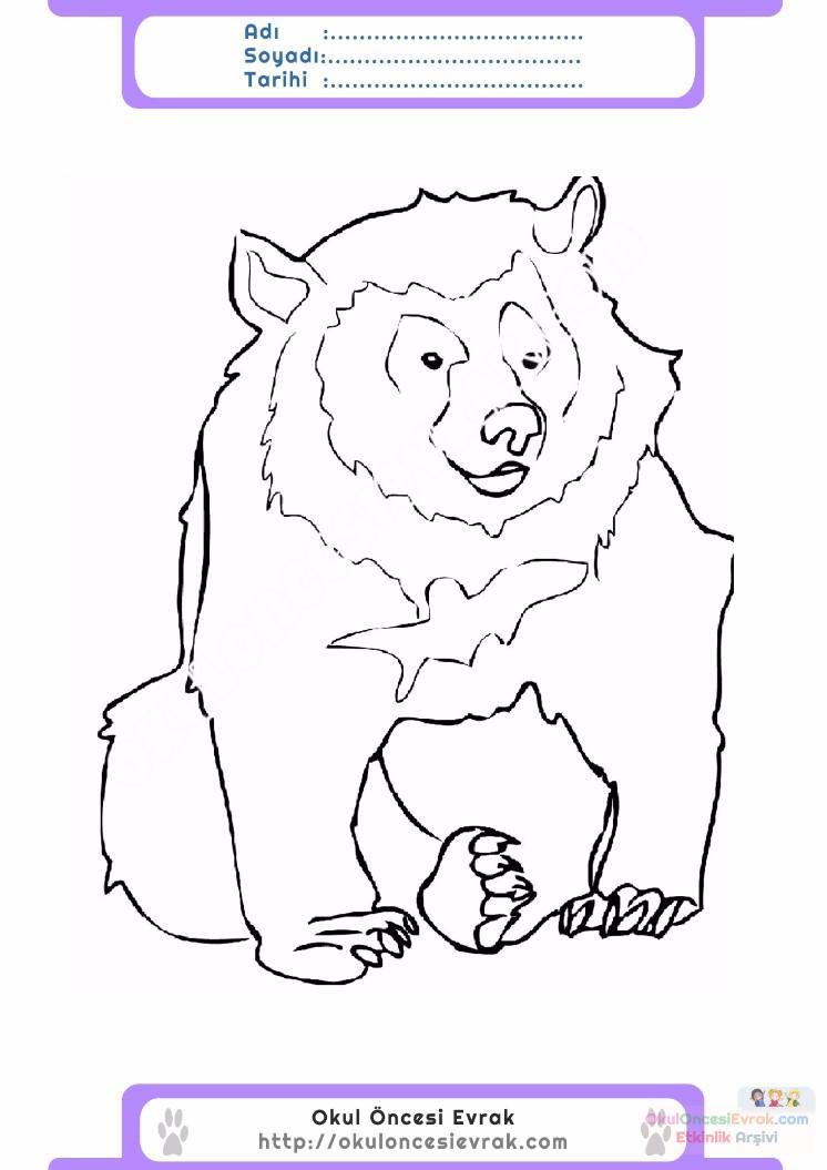 çocuklar Için Hayvan Ayı Boyama Sayfası 8 Preschool Activity