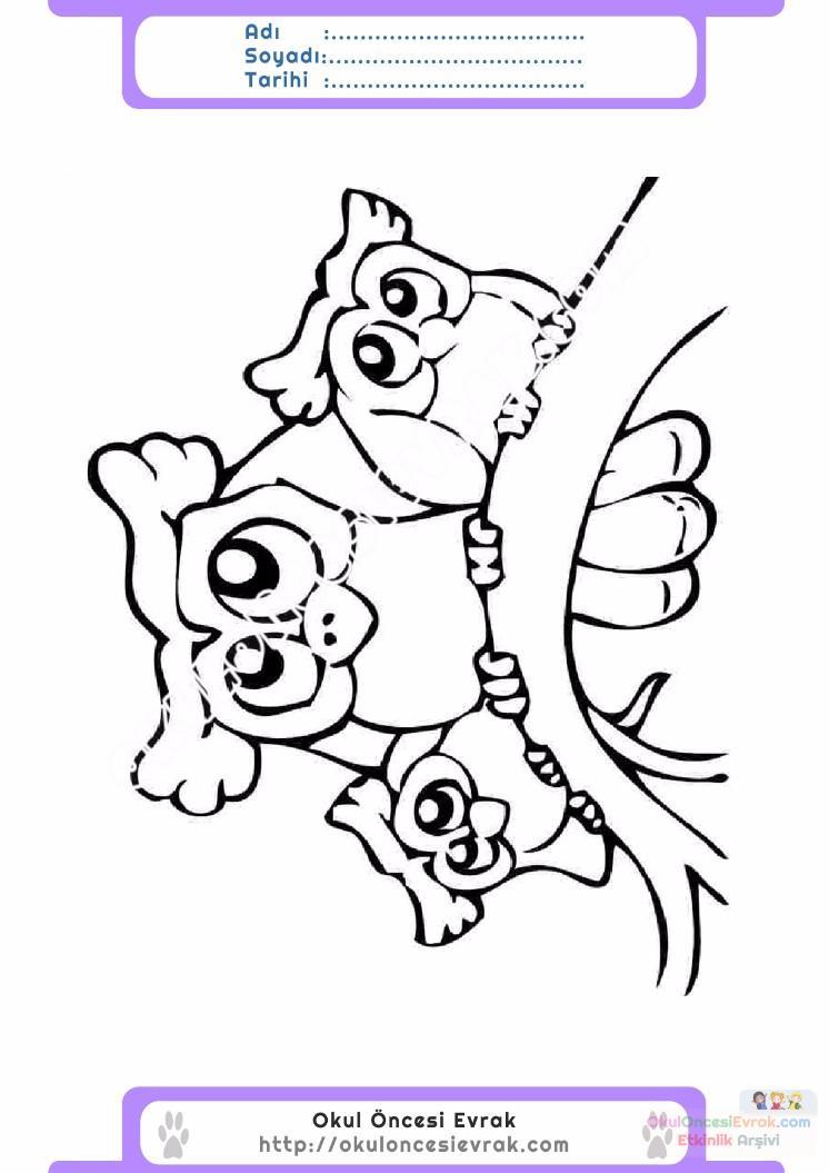 çocuklar Için Hayvan Baykuş Boyama Sayfası 28 Preschool Activity