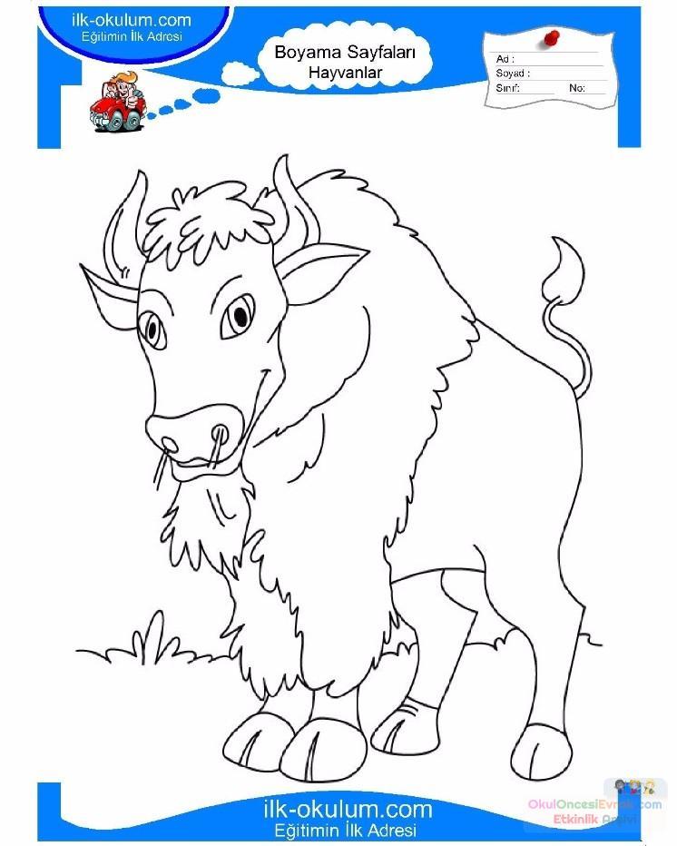 çocuklar Için Hayvan Boğa Boyama Sayfası 2 1 Preschool Activity