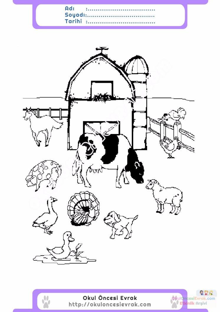 çocuklar Için Hayvan çiftlik Hayvanları Boyama Sayfası 27