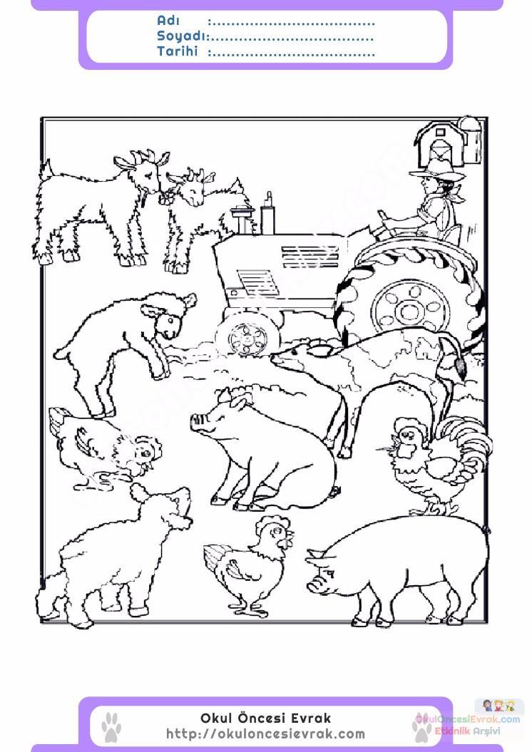 çocuklar Için Hayvan çiftlik Hayvanları Boyama Sayfası 37