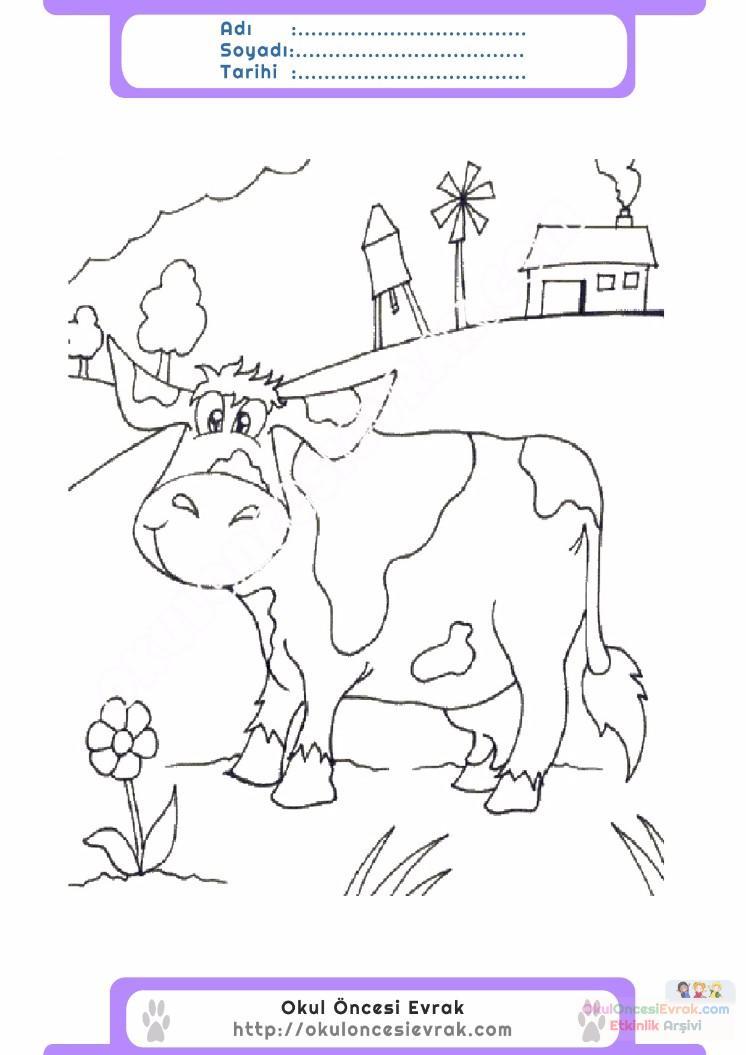çocuklar Için Hayvan çiftlik Hayvanları Boyama Sayfası 40