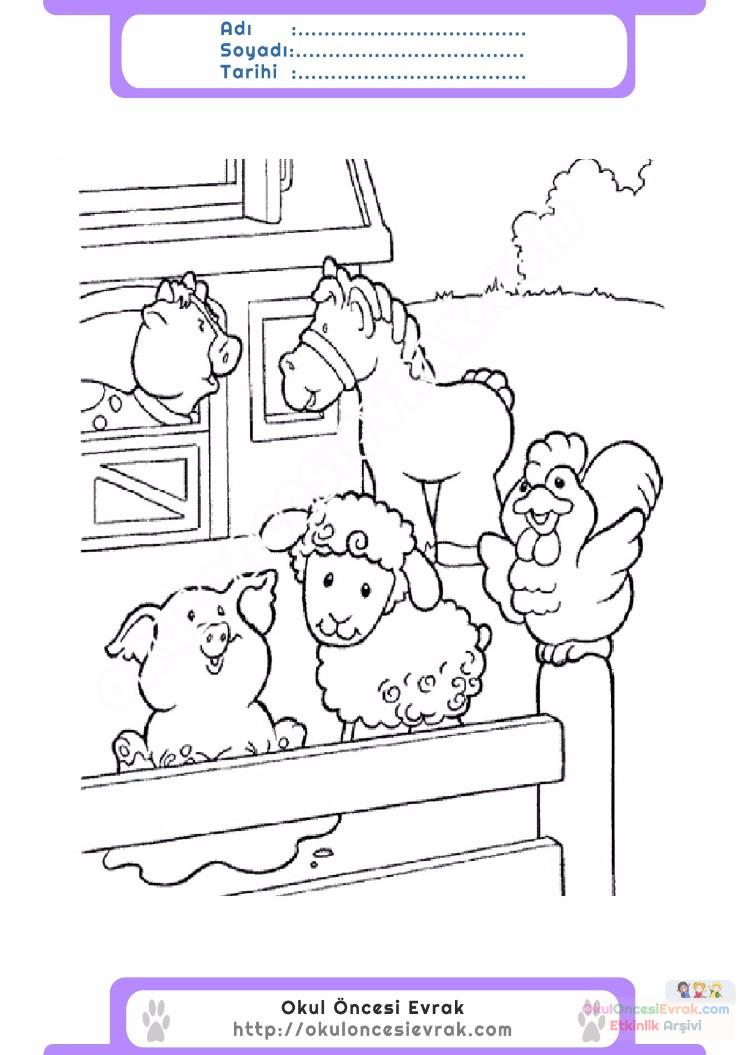çocuklar Için Hayvan çiftlik Hayvanları Boyama Sayfası 49