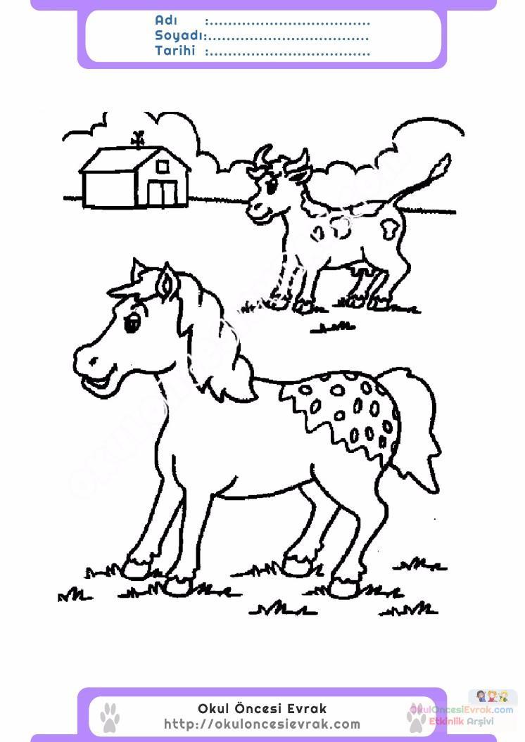 çocuklar Için Hayvan çiftlik Hayvanları Boyama Sayfası 5 Preschool