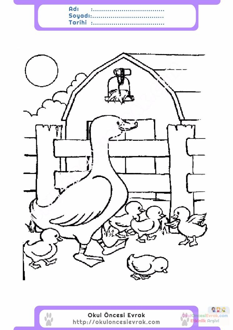 çocuklar Için Hayvan çiftlik Hayvanları Boyama Sayfası 57