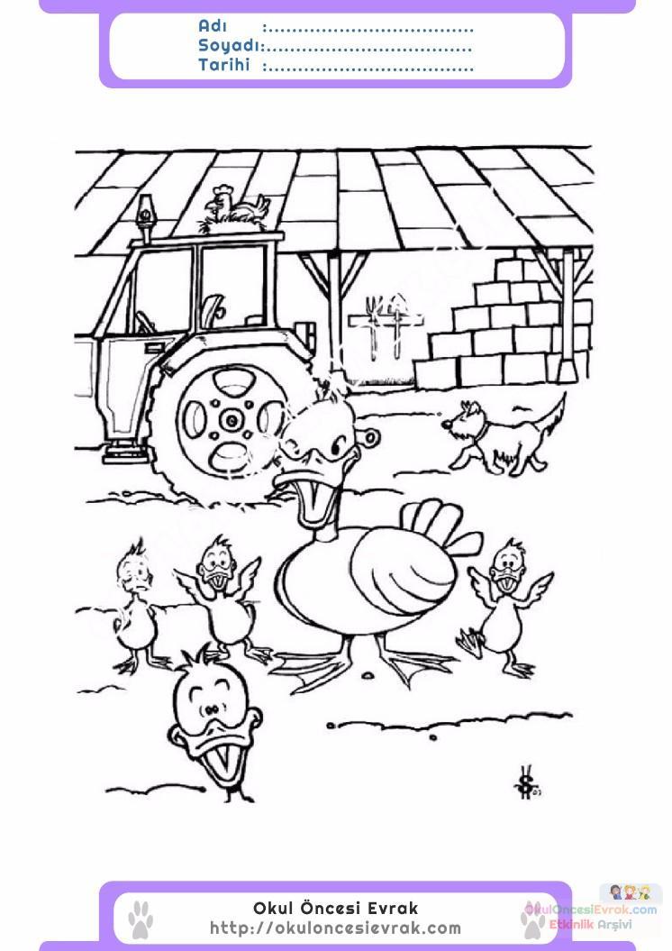 çocuklar Için Hayvan çiftlik Hayvanları Boyama Sayfası 58