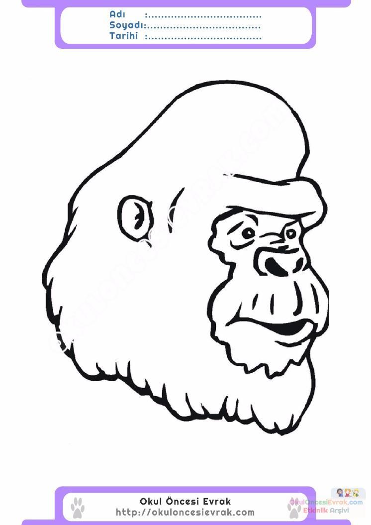 Goril Resmi Boyama Ust Ev Boyama Sayfasi