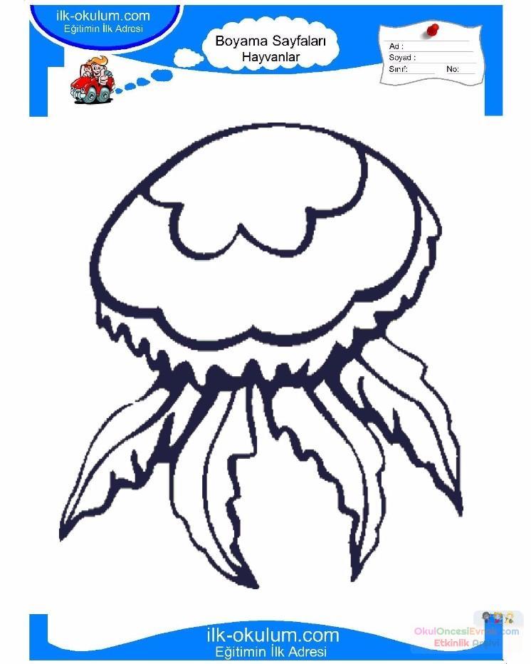 çocuklar Için Hayvan Hayvan Deniz Anası Boyama Sayfası 3 Preschool