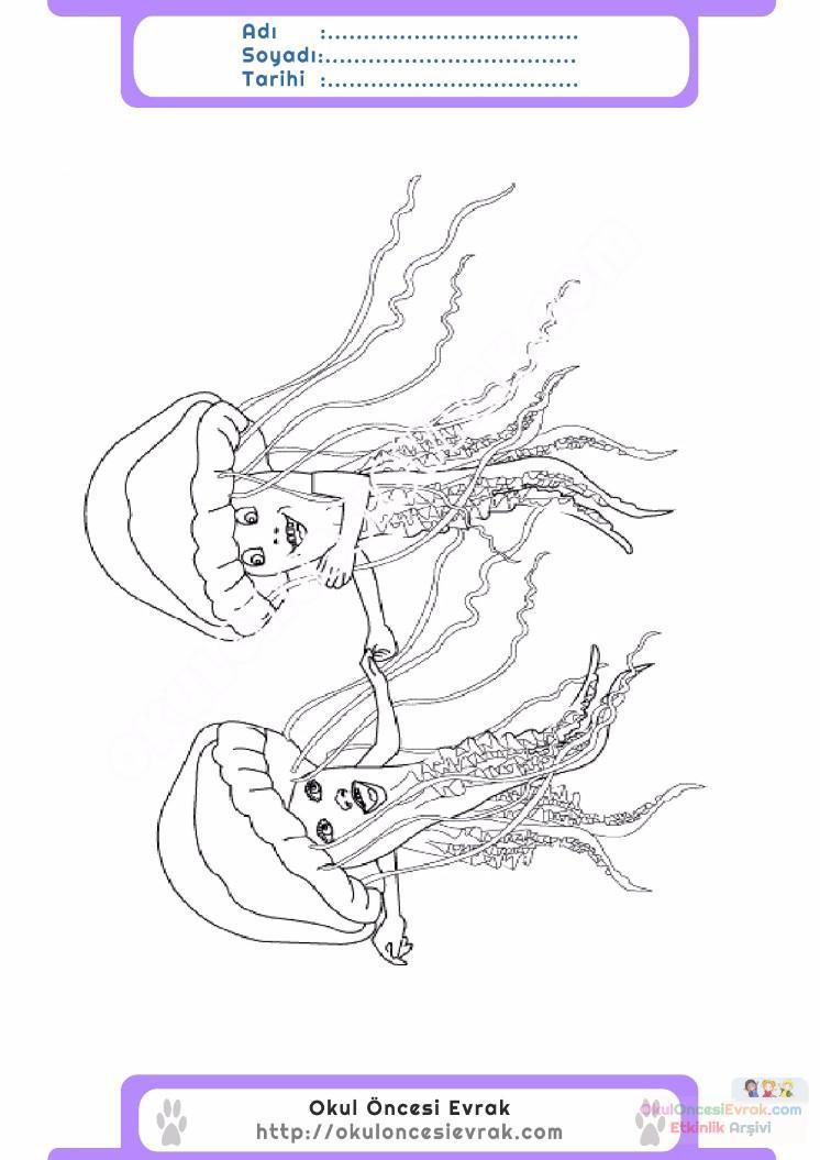 【En çok aranan】 Deniz Anası Boyama