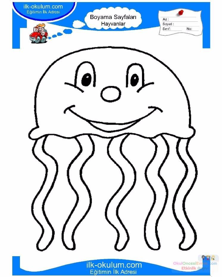 çocuklar Için Hayvan Hayvan Deniz Anası Boyama Sayfası 5 Preschool