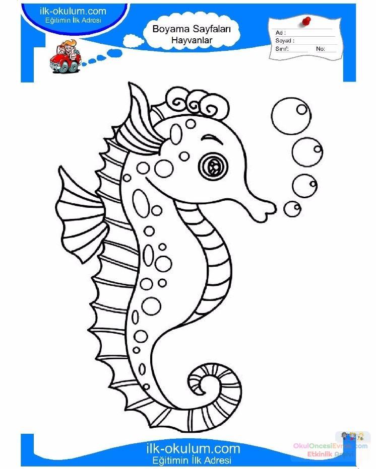 çocuklar Için Hayvan Hayvan Deniz Atı Boyama Sayfası 12 Preschool