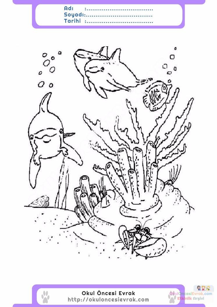 çocuklar Için Hayvan Hayvan Deniz Yaşamı Boyama Sayfası 5
