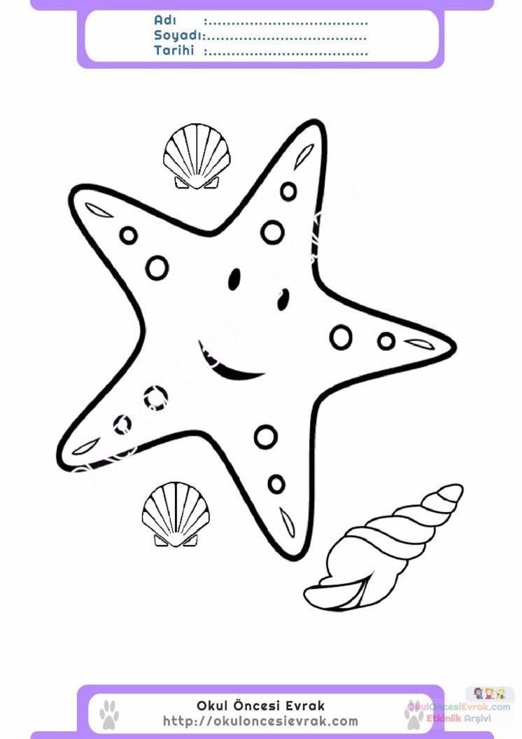 çocuklar Için Hayvan Hayvan Deniz Yıldızı Boyama Sayfası 11