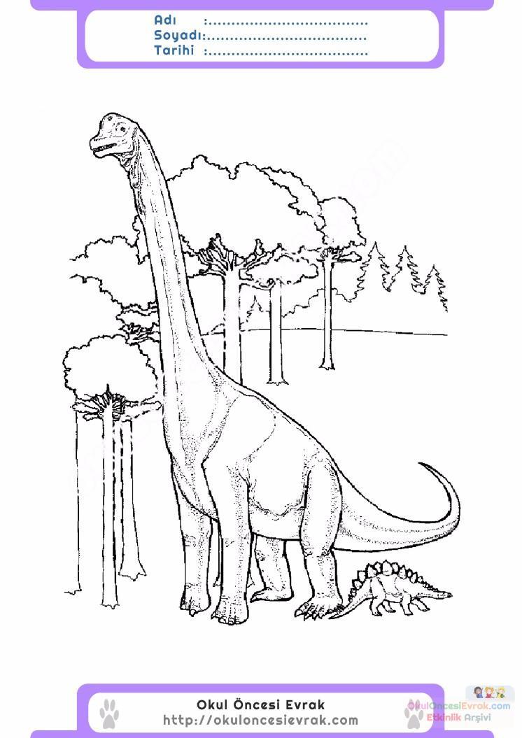 çocuklar Için Hayvan Hayvan Dinozor Boyama Sayfası 20 Preschool
