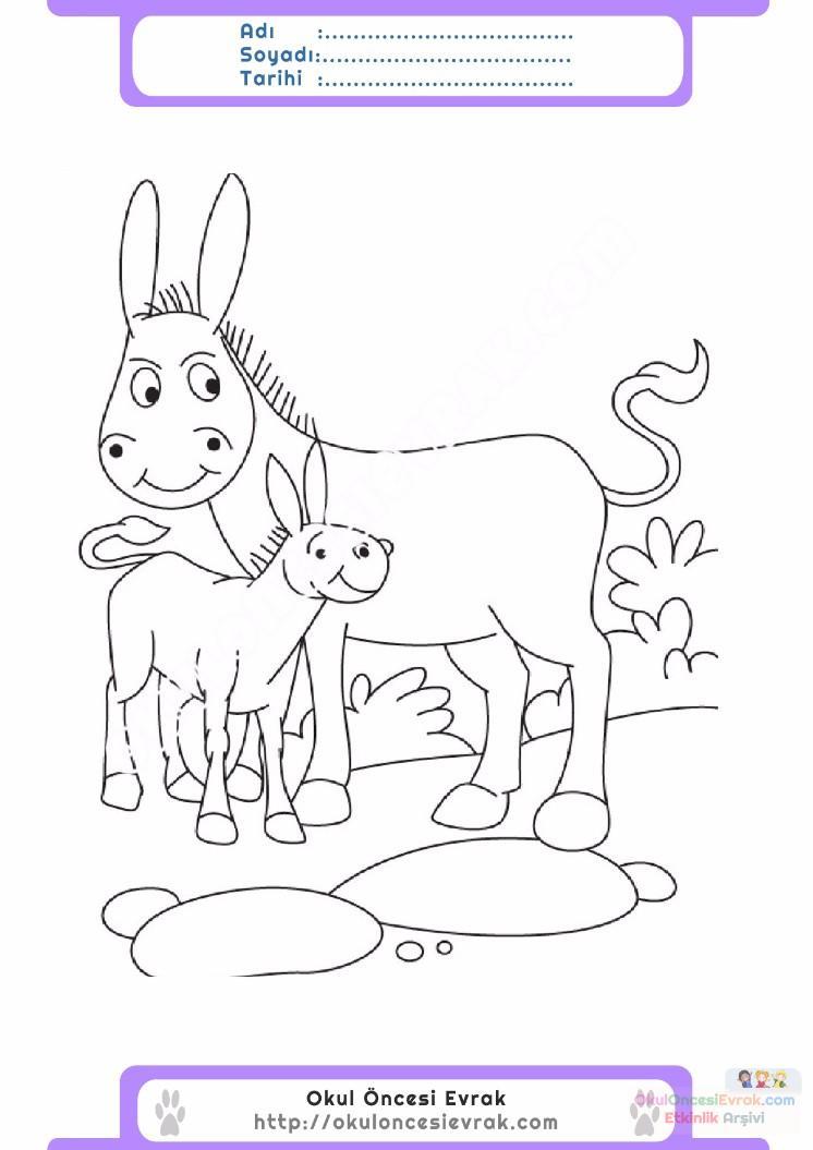 çocuklar Için Hayvan Hayvan Eşek Boyama Sayfası 10 Preschool Activity
