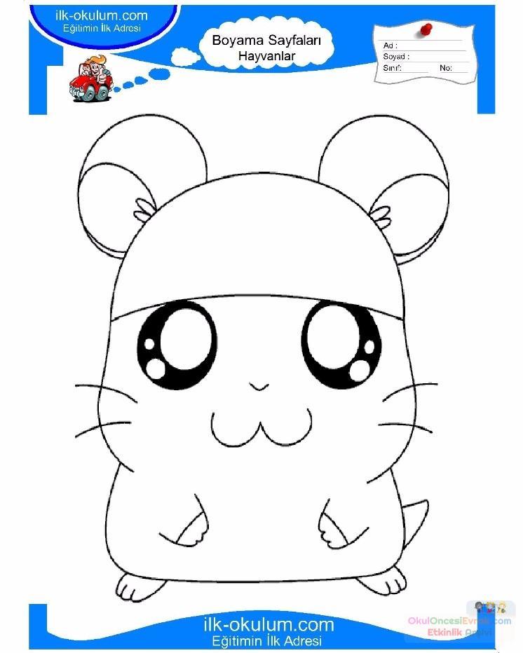 çocuklar Için Hayvan Hayvan Fare Boyama Sayfası 20 Preschool Activity