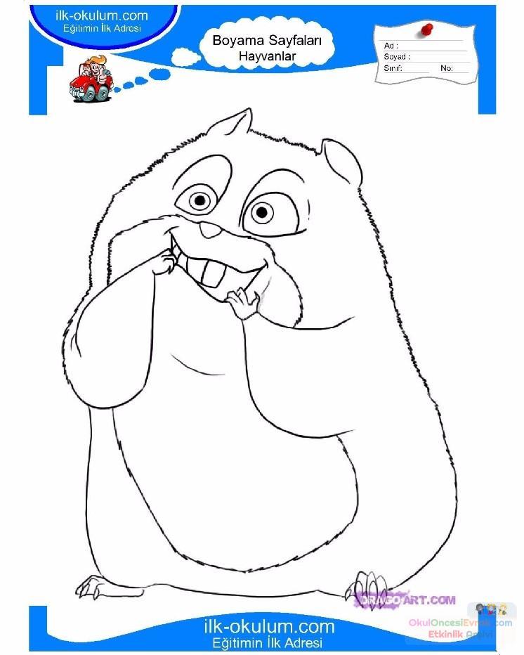 Cocuklar Icin Hayvan Hayvan Fare Boyama Sayfasi 25 Preschool