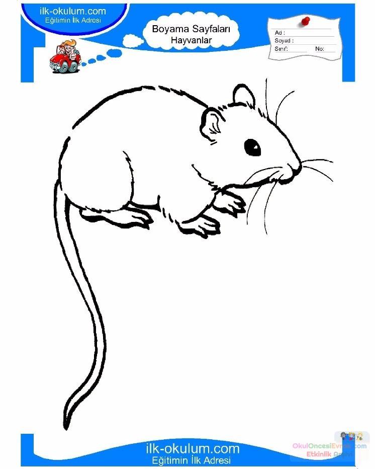 çocuklar Için Hayvan Hayvan Fare Boyama Sayfası 28 Preschool Activity