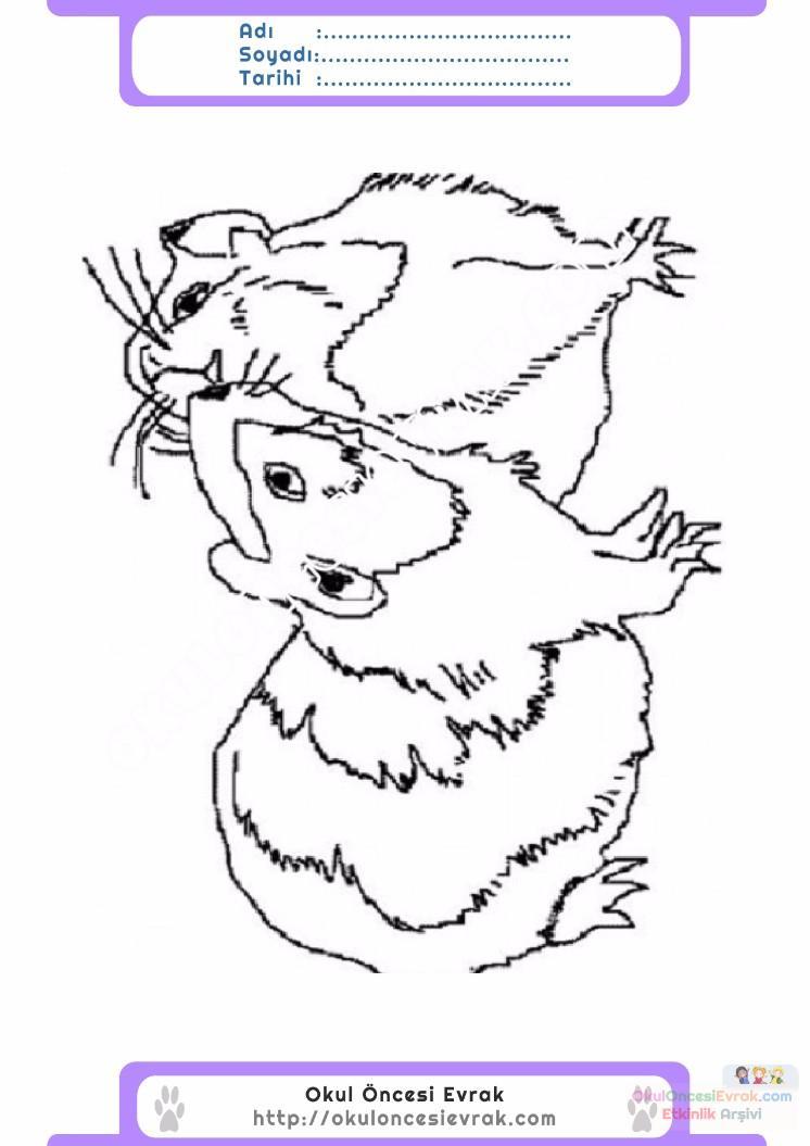 çocuklar Için Hayvan Hayvan Fare Boyama Sayfası 35 Preschool Activity
