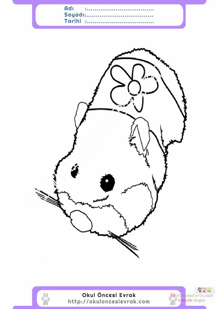 çocuklar Için Hayvan Hayvan Fare Boyama Sayfası 37 Preschool Activity