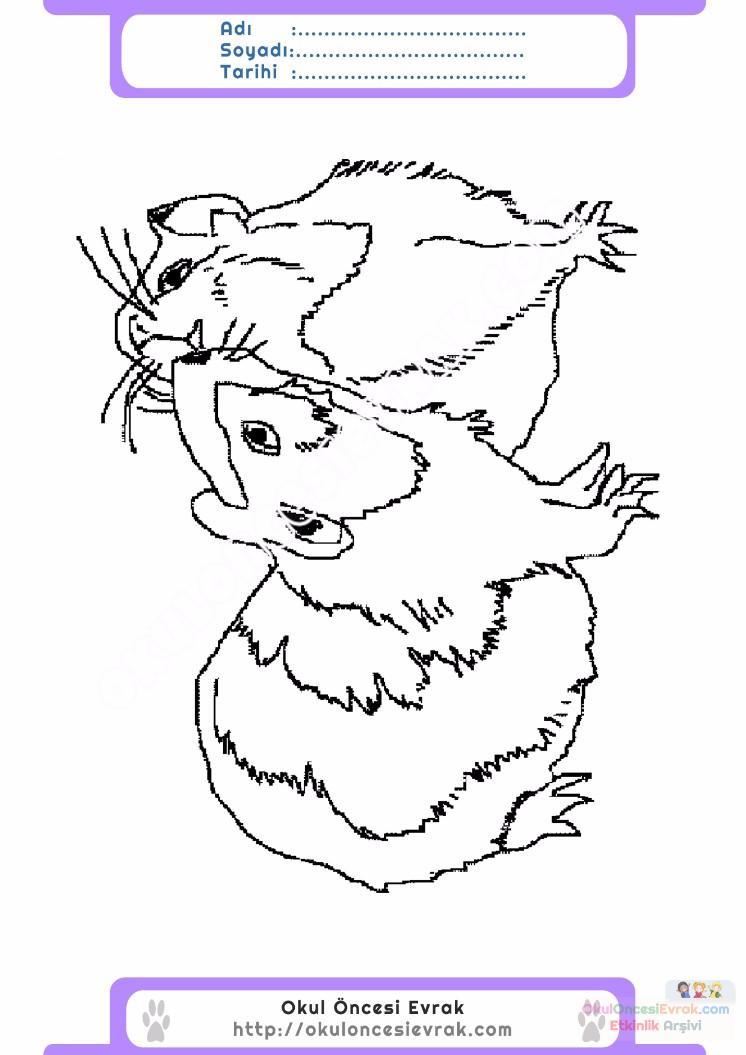 çocuklar Için Hayvan Hayvan Fare Boyama Sayfası 38 Preschool Activity