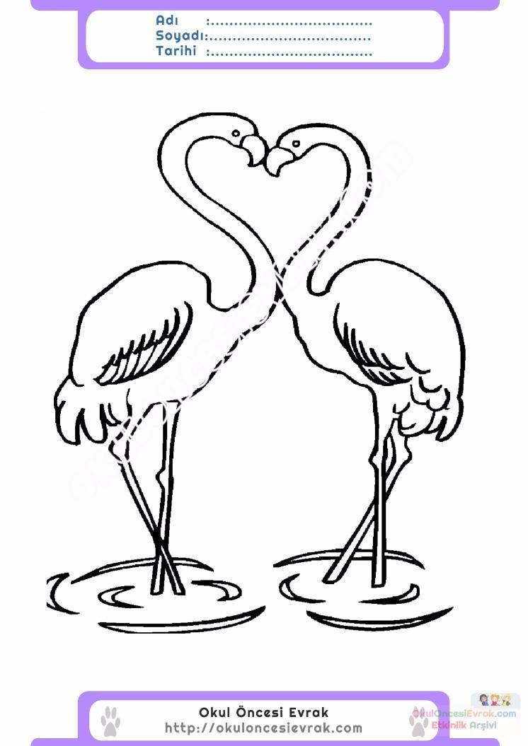 çocuklar Için Hayvan Hayvan Flamingo Boyama Sayfası 4 Preschool