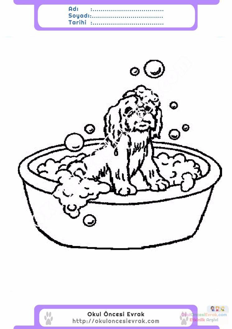 çocuklar Için Küvet Banyo Eşyalar Boyama Sayfası 13 Preschool Activity