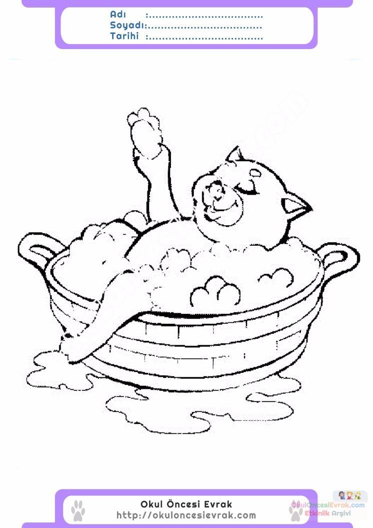 çocuklar Için Küvet Banyo Eşyalar Boyama Sayfası 15 Preschool Activity