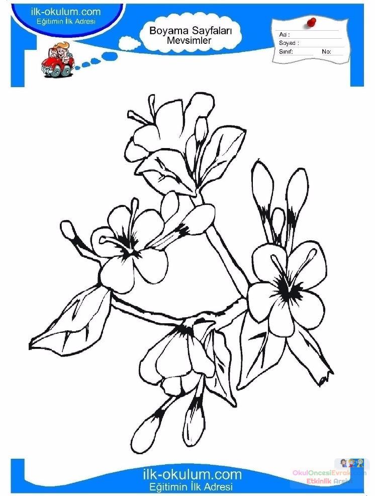 çocuklar Için Mevsimler Ilkbahar Mevsimi Boyama Sayfası 9 1