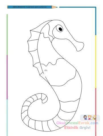 Deniz Atı Hayvanlar Deniz Canlıları Boyama 13 Preschool Activity
