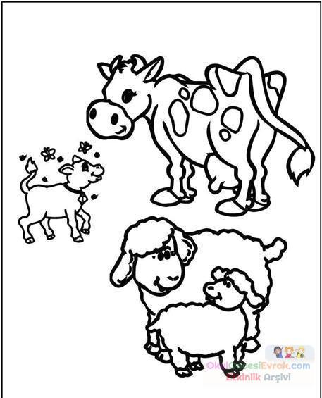 Inek Hayvanlar Boyama 6 Preschool Activity