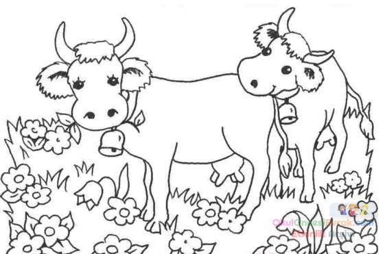Inek Hayvanlar Boyama 9 Preschool Activity