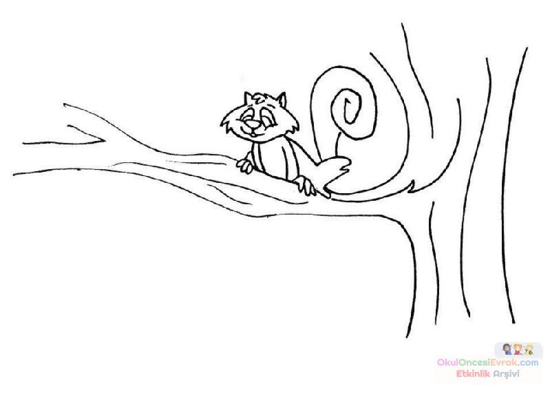 Kedi Hayvanlar Boyama 44 Preschool Activity