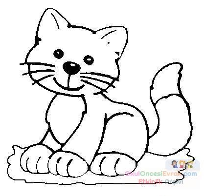 Kedi Hayvanlar Boyama 53 Preschool Activity