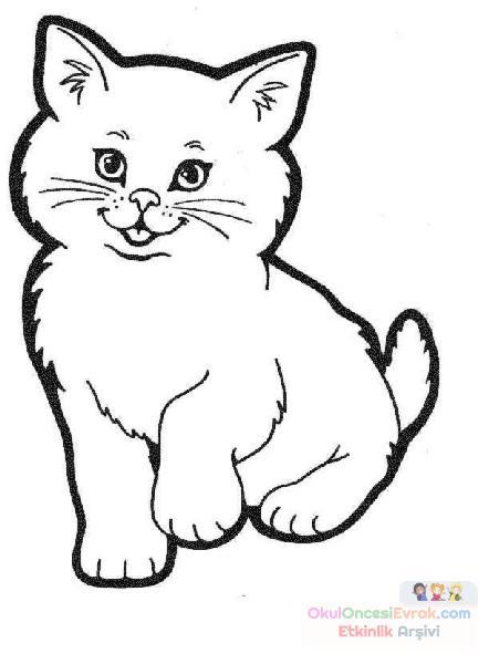 Kedi Hayvanlar Boyama 68 Preschool Activity