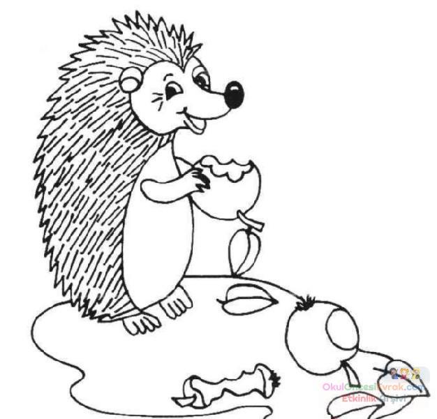 Kirpi Hayvanlar Boyama 147 Preschool Activity