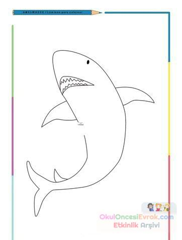Köpek Balığı Hayvanlar Deniz Canlıları Boyama 1 Preschool Activity