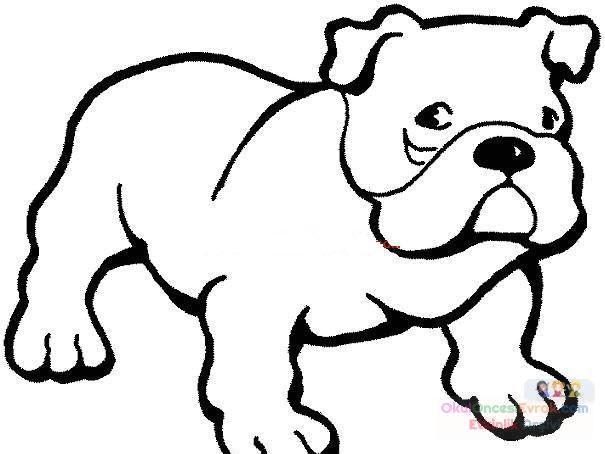 Köpek Hayvanlar Boyama 26 Preschool Activity