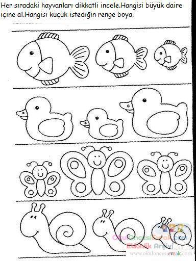 Küçük Büyük Kavramı 5 Preschool Activity
