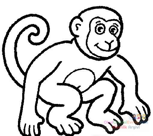 Maymun Hayvanlar Boyama 57 Preschool Activity