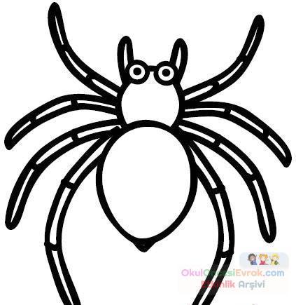 örümcek Hayvanlar Boyama 634 Preschool Activity