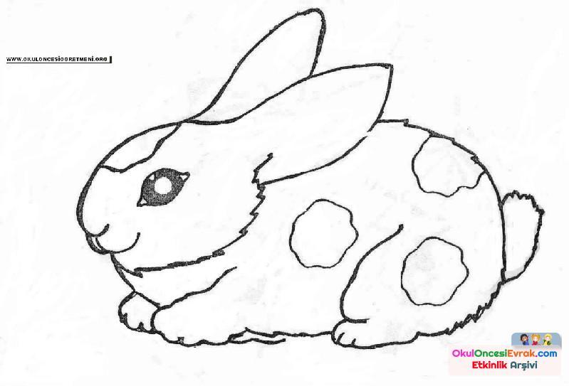 Tavşan Boyama Preschool Activity